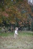Bébé garçon mignon courant par des feuilles d'automne image libre de droits