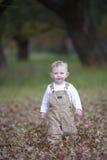 Bébé garçon mignon courant par des feuilles d'automne images stock