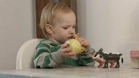 Bébé garçon mignon jouant avec les jouets animaux sur la table à la maison banque de vidéos