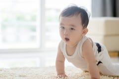 Bébé garçon mignon rampant sur le tapis Photographie stock