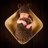 Bébé garçon nouveau-né Photographie stock libre de droits