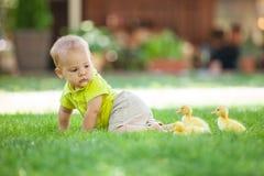 Bébé garçon rampant sur l'herbe verte Photos libres de droits
