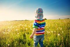 Bébé garçon se tenant dans l'herbe sur le fieald avec des pissenlits Photos stock