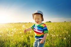 Bébé garçon se tenant dans l'herbe sur le fieald avec des pissenlits Image stock