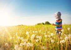 Bébé garçon se tenant dans l'herbe sur le fieald avec des pissenlits Photo libre de droits