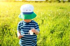 Bébé garçon se tenant dans l'herbe sur le fieald avec des pissenlits Image libre de droits