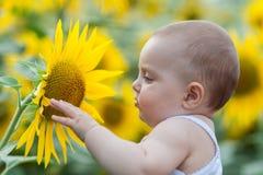 Bébé jouant avec le tournesol images libres de droits