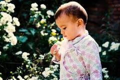 Bébé jouant avec les fleurs blanches dans le jardin photo libre de droits