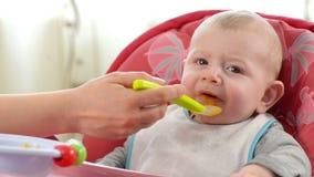 Bébé mangeant dans une chaise d'arbitre banque de vidéos