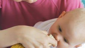 Bébé mangeant la banane des mains de mère banque de vidéos