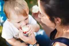 Bébé mangeant une pomme Photos libres de droits