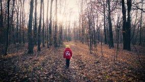 Bébé marchant dans la forêt d'automne banque de vidéos