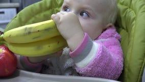Bébé mignon mangeant une banane, premières dents Premier essai à la mastication 4K UltraHD, UHD banque de vidéos