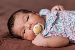 Bébé nouveau-né âgé mignon de deux semaines avec une tétine Image stock