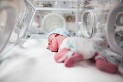 Bébé nouveau-né couvert dans le vertix dans l'incubateur photo libre de droits