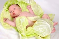 Bébé nouveau-né dans des feuilles de chou photos libres de droits