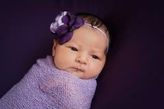 Bébé nouveau-né dans la lavande et le pourpre images stock