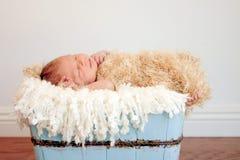 Bébé nouveau-né dans le conteneur en bois bleu-clair Photographie stock libre de droits