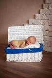 Bébé nouveau-né de dormeur dans le boîtier blanc Photos stock