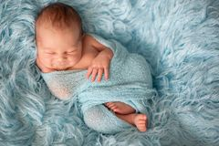 Bébé nouveau-né de sourire heureux dans l'enveloppe, dormant heureusement en fourrure confortable photos stock