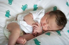 Bébé nouveau-né latin dormant paisiblement Images libres de droits