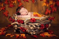 Bébé nouveau-né mignon dans une guirlande des cônes et baies dans un panier avec des feuilles d'automne Photos libres de droits