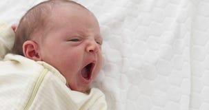 Bébé nouveau-né minuscule de baîllement banque de vidéos