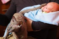 Bébé nouveau-né tenu par le père et le chat Image stock