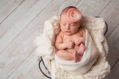 Bébé nouveau-né utilisant un bandeau de fleur photographie stock libre de droits