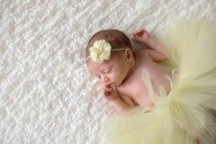 Bébé nouveau-né utilisant un tutu jaune photographie stock libre de droits