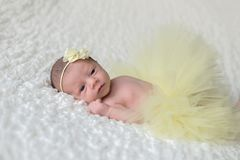 Bébé nouveau-né utilisant un tutu jaune images libres de droits