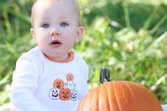 Bébé observé bleu avec un potiron Image libre de droits