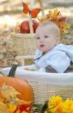 Bébé observé bleu dans le panier, thème d'automne Photographie stock libre de droits