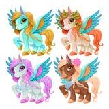 Bébé Pegasus pour la liberté et la magie Image libre de droits
