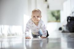 Bébé rampant le long du passage ouvert dans la maison image stock
