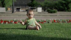 Bébé rampant lentement sur le pré de Le petit monde de bébé Mouvement lent 4K clips vidéos
