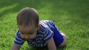 Bébé rampant lentement sur le pré de Le petit monde de bébé Mouvement lent 4K banque de vidéos
