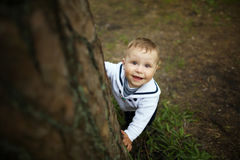Bébé se cachant derrière l'arbre dans le parc Photos libres de droits