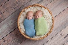 Bébés garçon jumeaux disant des secrets Photographie stock libre de droits