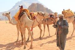 Bédouin et leurs chameaux Photos stock