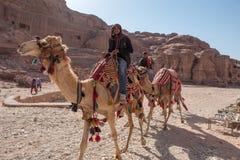 Bédouin montant son chameau image stock