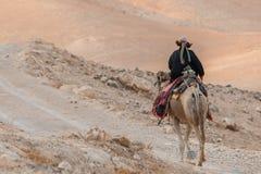 Bédouin montant un chameau image libre de droits