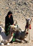 Bédouine de femme dans des vêtements noirs dans la perspective des chameaux menteur photo stock