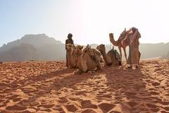 Bédouins préparant les chameaux pour le touriste qui les montera au coucher du soleil dans le désert de Wadi Rum, Jordanie photo libre de droits