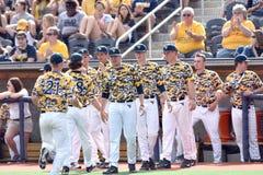2015 béisbol del NCAA - TCU @ WVU Imagen de archivo libre de regalías