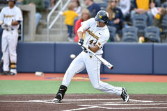 2015 béisbol del NCAA - WVU-TCU Imagen de archivo libre de regalías