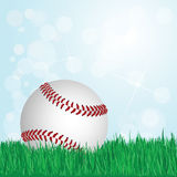 Béisbol en hierba libre illustration