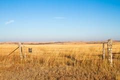 Bénédiction de prairie Images stock