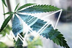 Bénéfices d'industrie du ` s de marijuana grands image stock