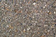 Béton d'asphalte Photo libre de droits